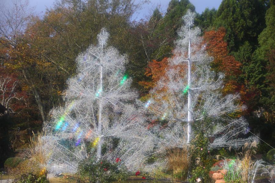 ▲クリスマスツリー 昼 -2-