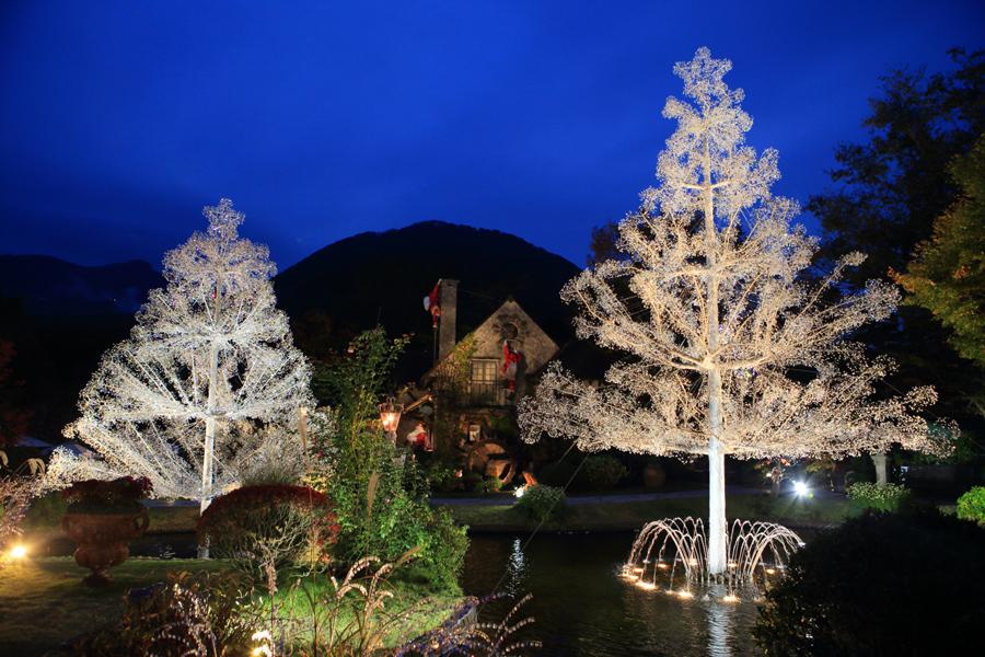 ▲クリスマスツリー 夜