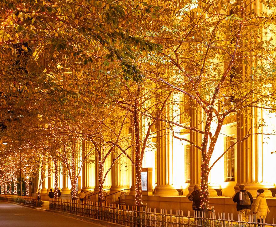 ▲江?桜通り・本町通りイルミネーション 日本橋の歴史ある通り「江?桜通り」「本町通り」をシャンパンゴールドとホワイトブルーのLEDライトでライトアップ。 期間:11月6日(金)~2月14日(日) ※画像は昨年の様子