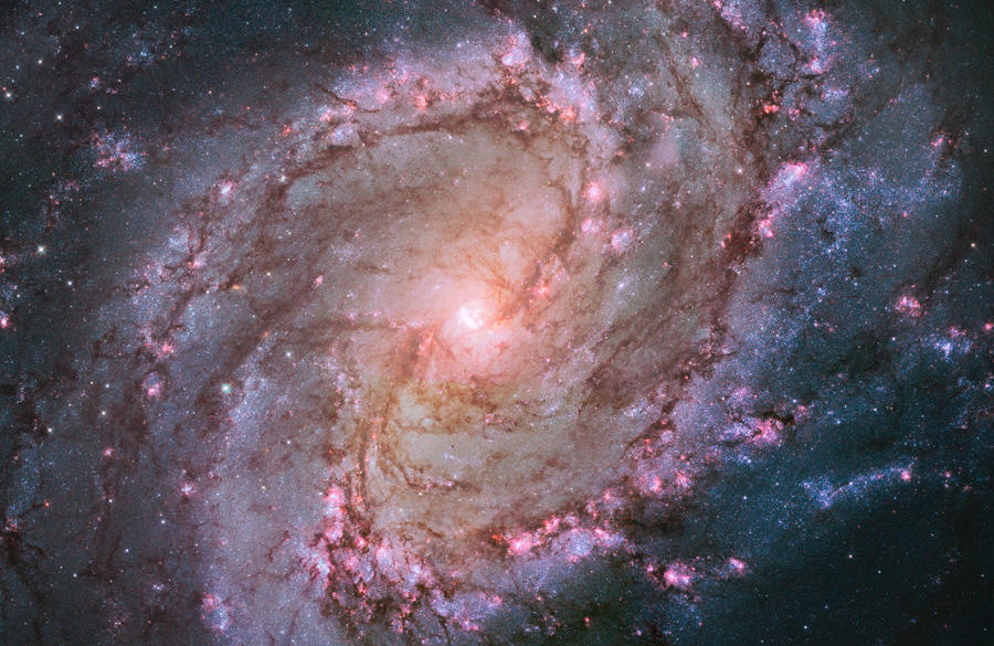 ▲「南天の回転花火銀河」とも呼ばれる棒渦巻銀河M83 の中心付近  ハッブル宇宙望遠鏡による観測 NASA, ESA, and the Hubble Heritage Team (STScl/AURA)