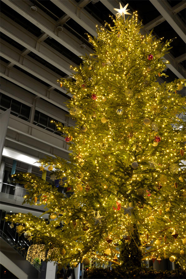 ▲【新宿パークタワー】クリスマスツリー