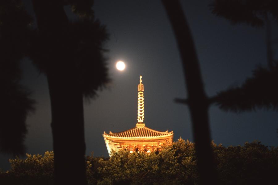中秋の名月と三重塔
