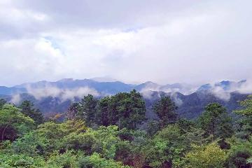 この秋おすすめ!「高尾山」ハイキングレポ