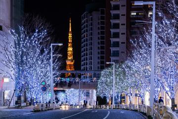 冬デートの決定版!東京のイルミネーション8選