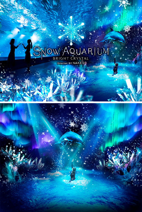 SNOW AQUARIUM-BRIGHT CRYSTAL- Directed BY NAKED
