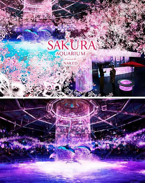 SAKURA AQUARIUM Directed BY NAKED