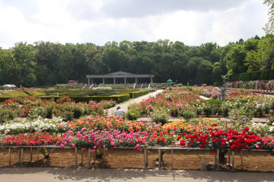 神代植物公園