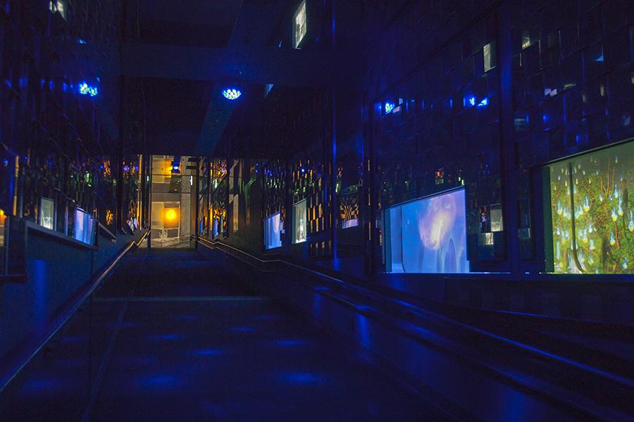 クラゲ万華鏡トンネル