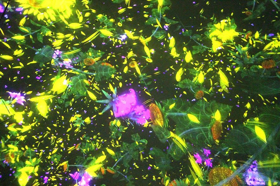 チームラボプラネッツ_Floating in the Falling Universe of Flowers_3