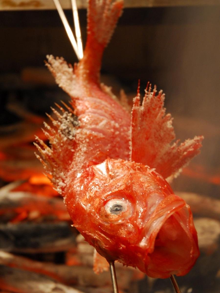 醍醐味釣りきんきの炉端焼き