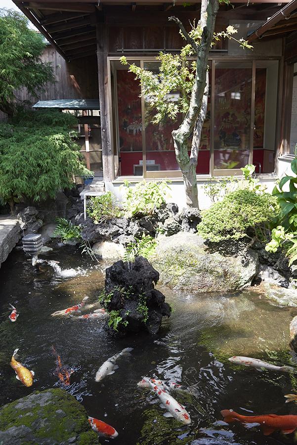 タカラ湯 池
