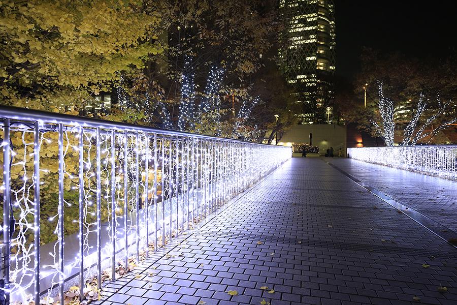 西新宿街ぐるみプロジェクト illumination museum 2018