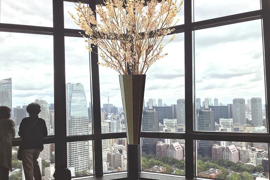 東京タワーお花見デッキ