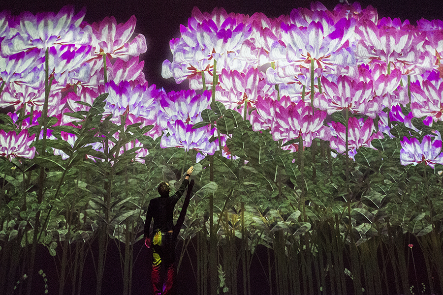 MORI Building DIGITAL ART MUSEUM: EPSON teamLab Borderless 花の精霊