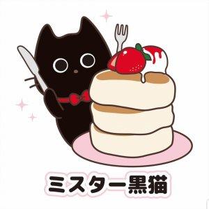 ミスター黒猫さん