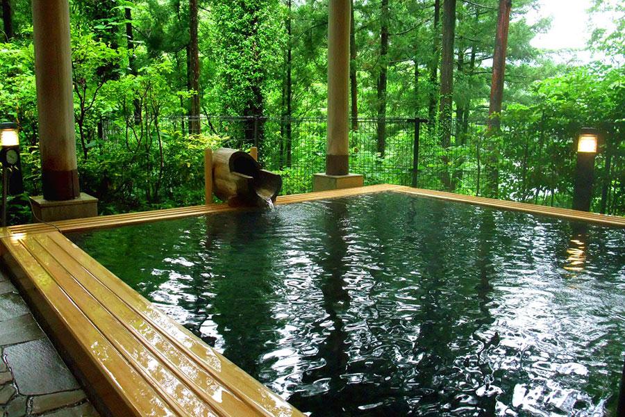 奥多摩温泉 もえぎの湯