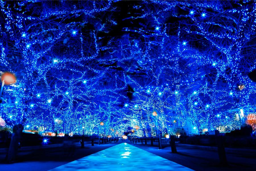 『青の洞窟SHIBUYA』