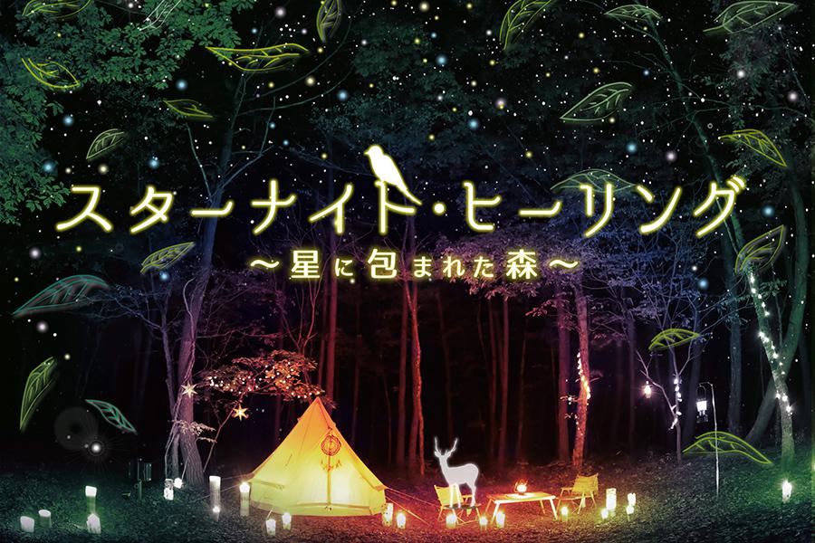 スターナイト・ヒーリング ~星に包まれた森~