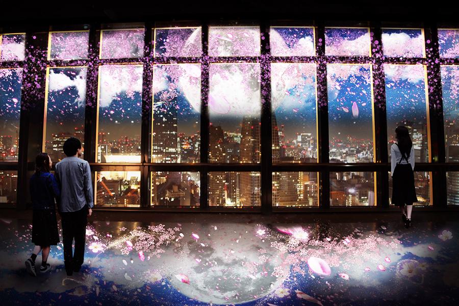TOKYO TOWER CITY LIGHT FANTASIA~夜桜バージョン~