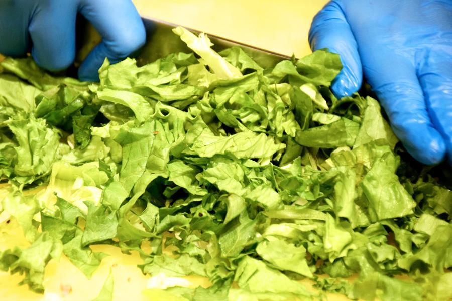 サラダストップ野菜