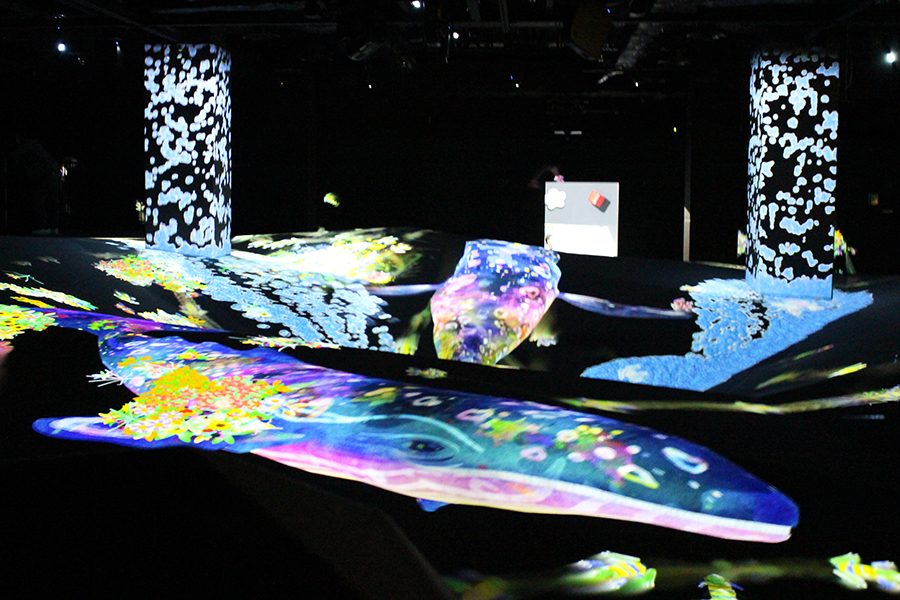 MORI Building DIGITAL ART MUSEUM: EPSON teamLab Borderles_運動の森s