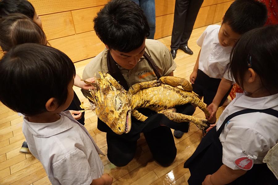 恐竜どうぶつ園 赤ちゃん恐竜