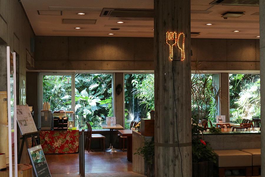 夢の島公園 熱帯植物館 カフェ
