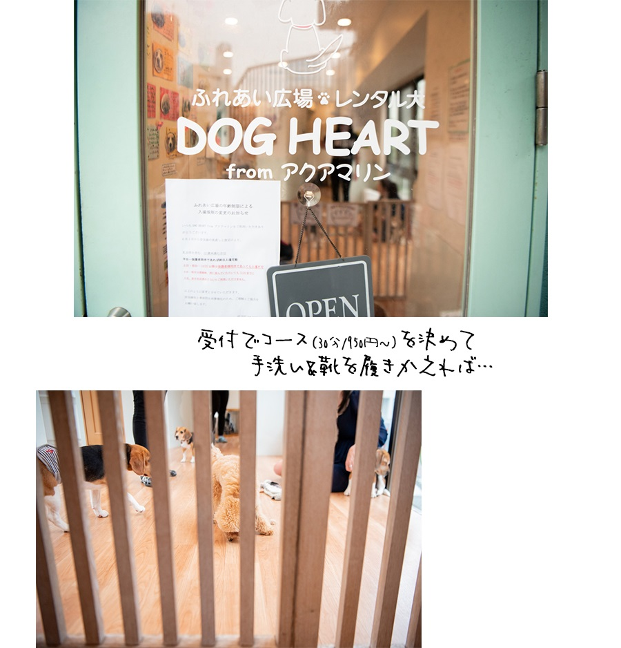 DOG HEART from アクアマリン