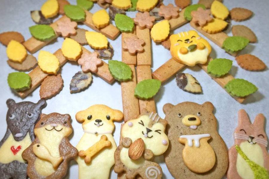 「henteco 森の洋菓子店」クッキー勢ぞろい