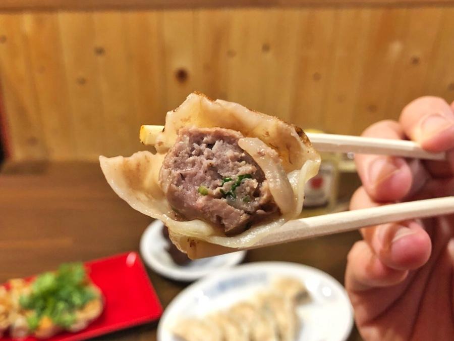 中野餃子 やまよし 「ラムパクチー餃子」(480円)アップ