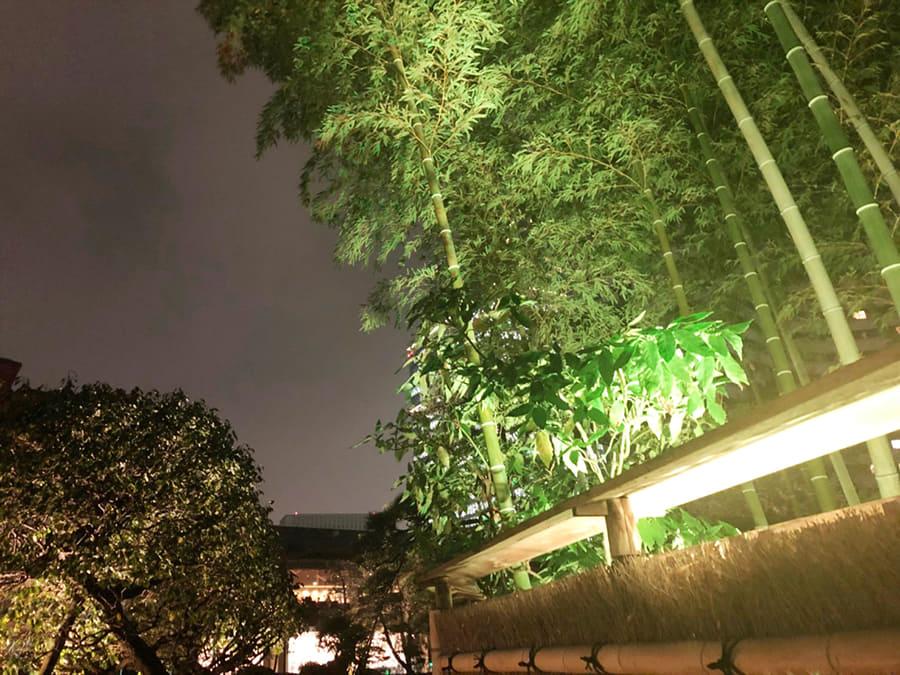 ホテルニューオータ 日本庭園_5