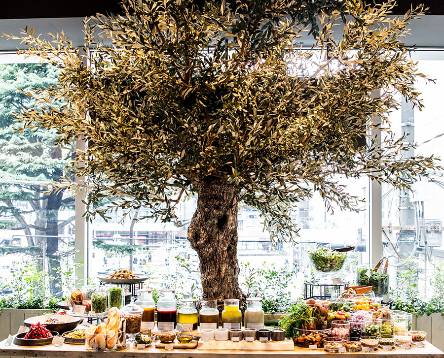 Cosme Kitchen Adaptation アトレ恵比寿店 オリーブの木