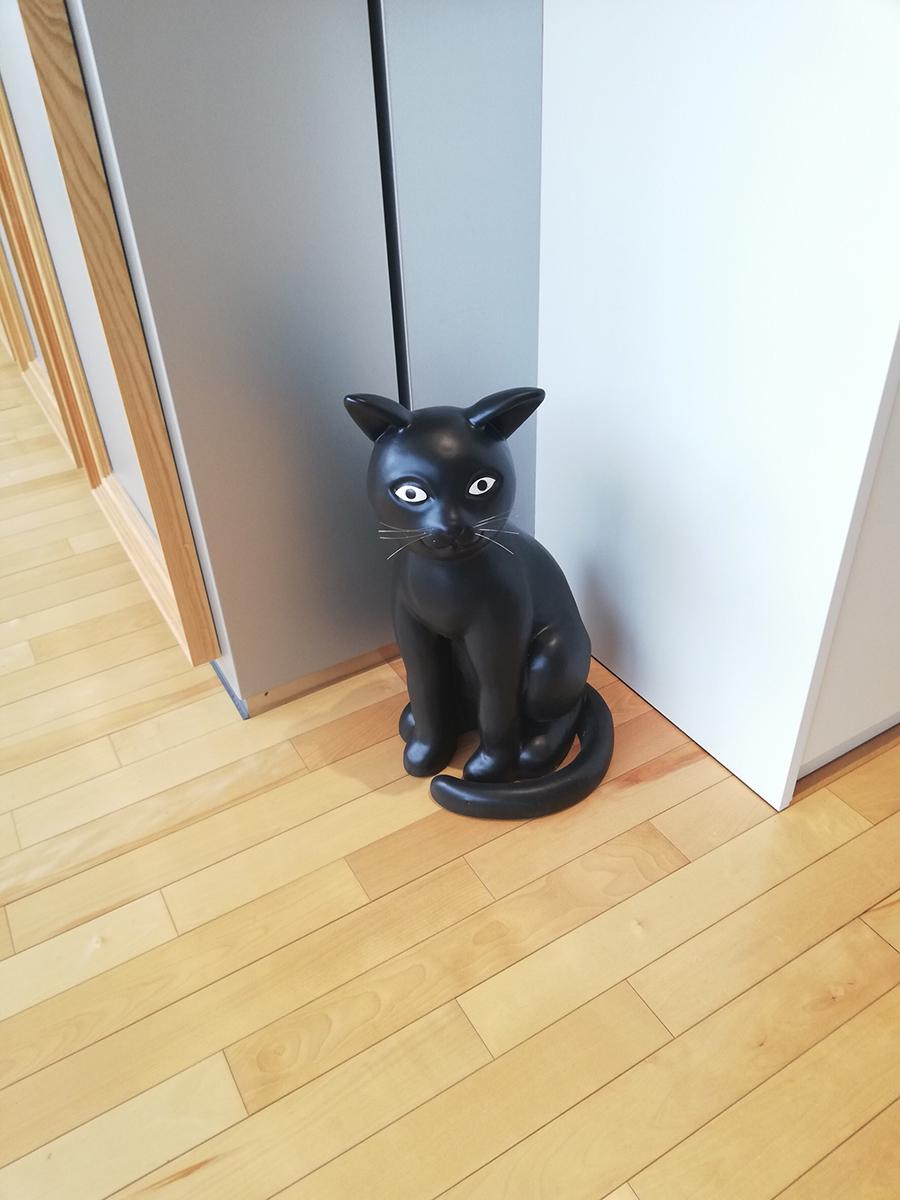 CAFE SOSEKI_猫