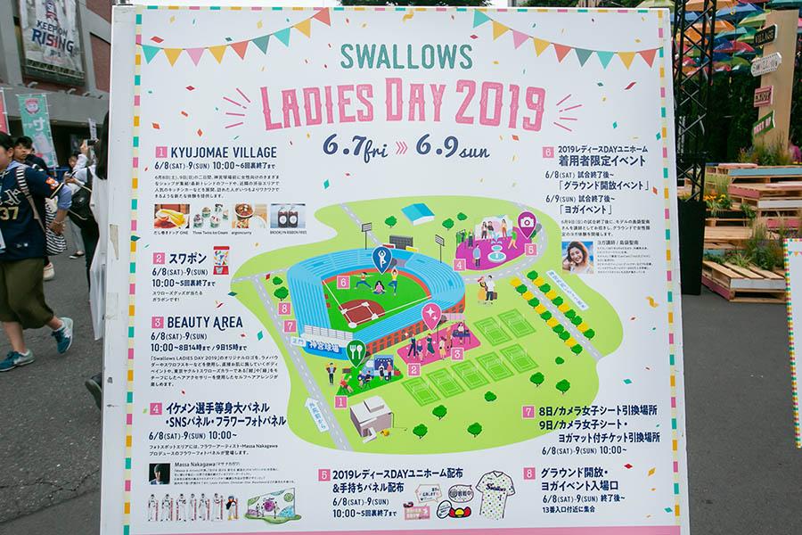 SWALLOWS LADIES DAY 2019