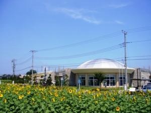 牛島古川公園(第2期)