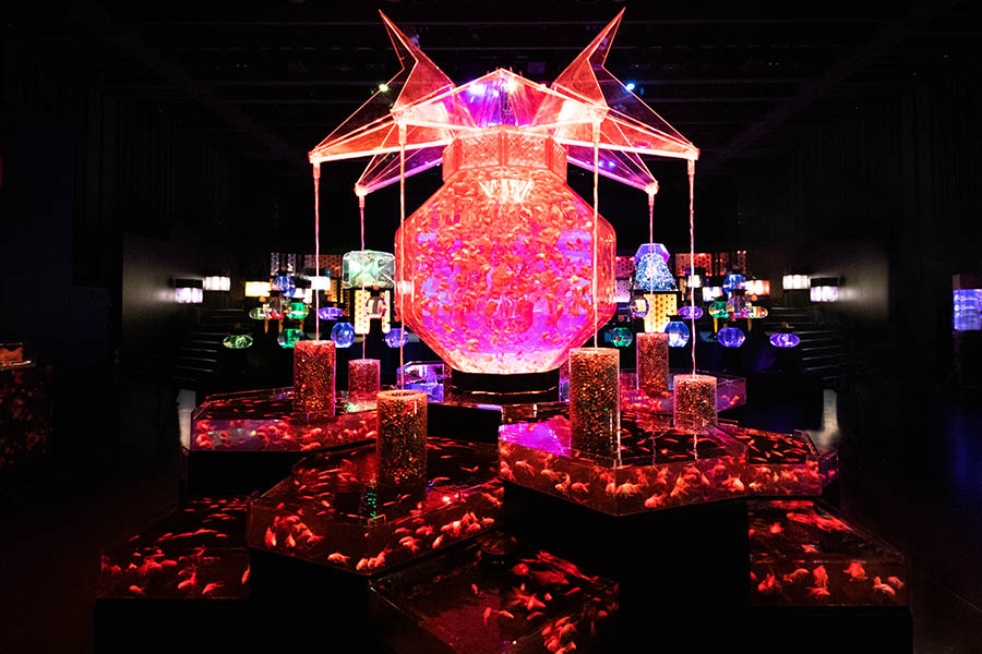 ECO EDO 日本橋 アートアクアリウム 2019 ~江戸・金魚の涼~&ナイトアクアリウム