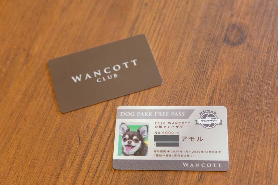 WANCOTT アモルくんアンバサダー犬