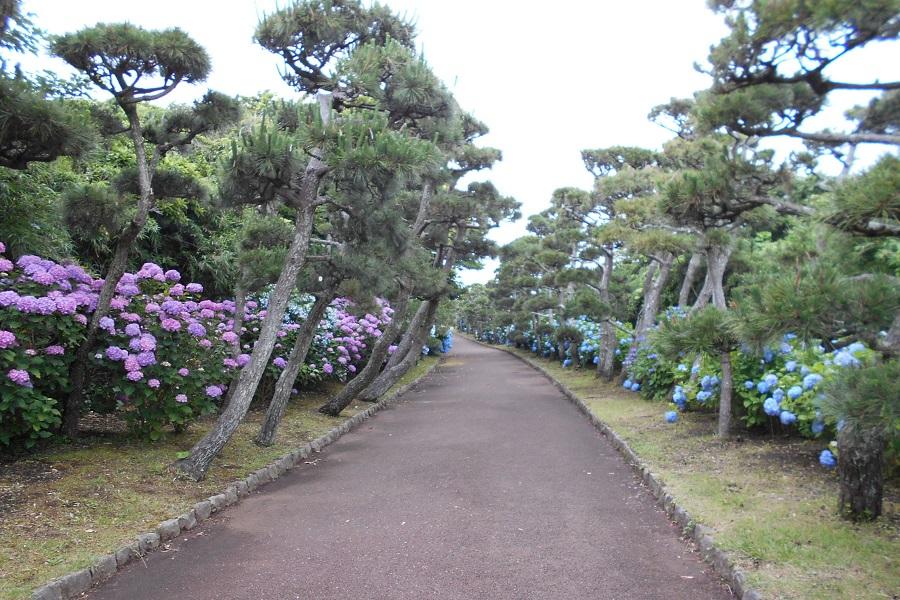 神奈川県立城ケ島公園