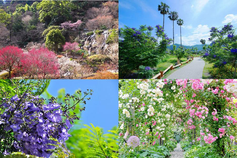 熱海の四季