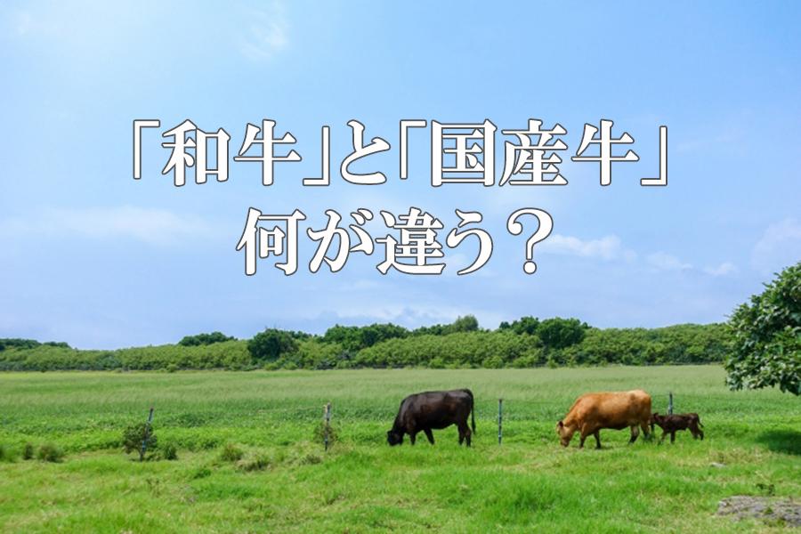 オンライン和牛ショー