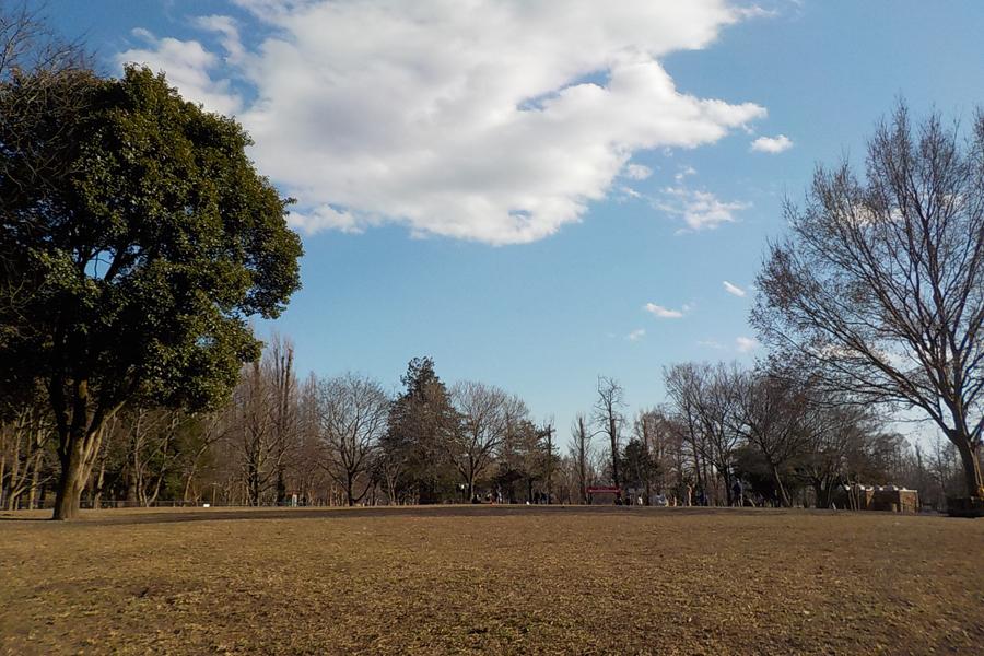 水元公園 ドッグラン