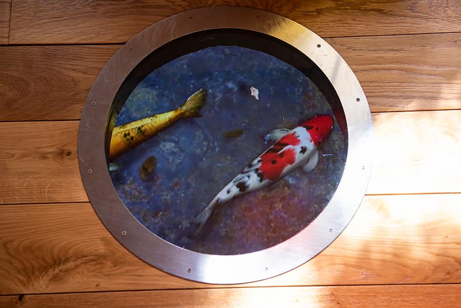はすぬま温泉 映像の池