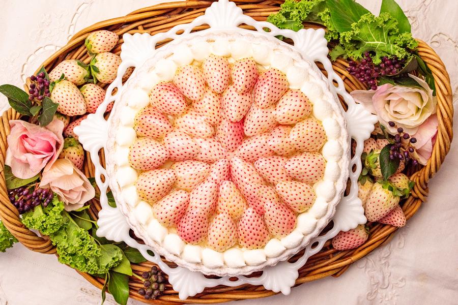 キル フェ ボン グランメゾン銀座 特選 白イチゴ