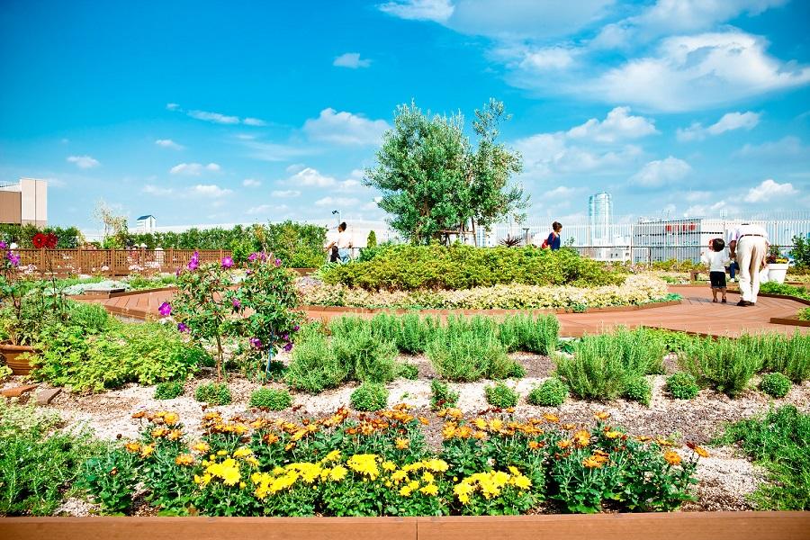 ebisu green garden