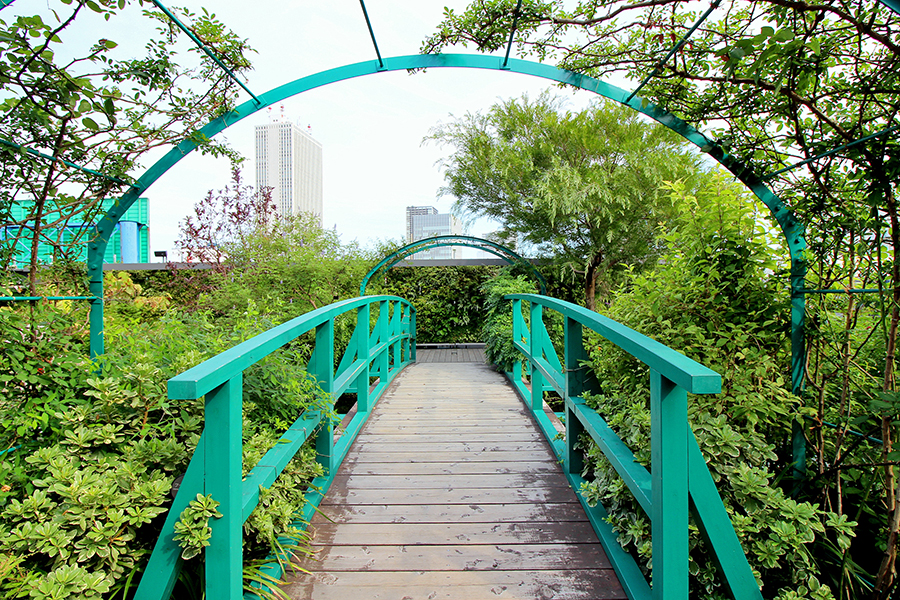 池に架かる橋の上