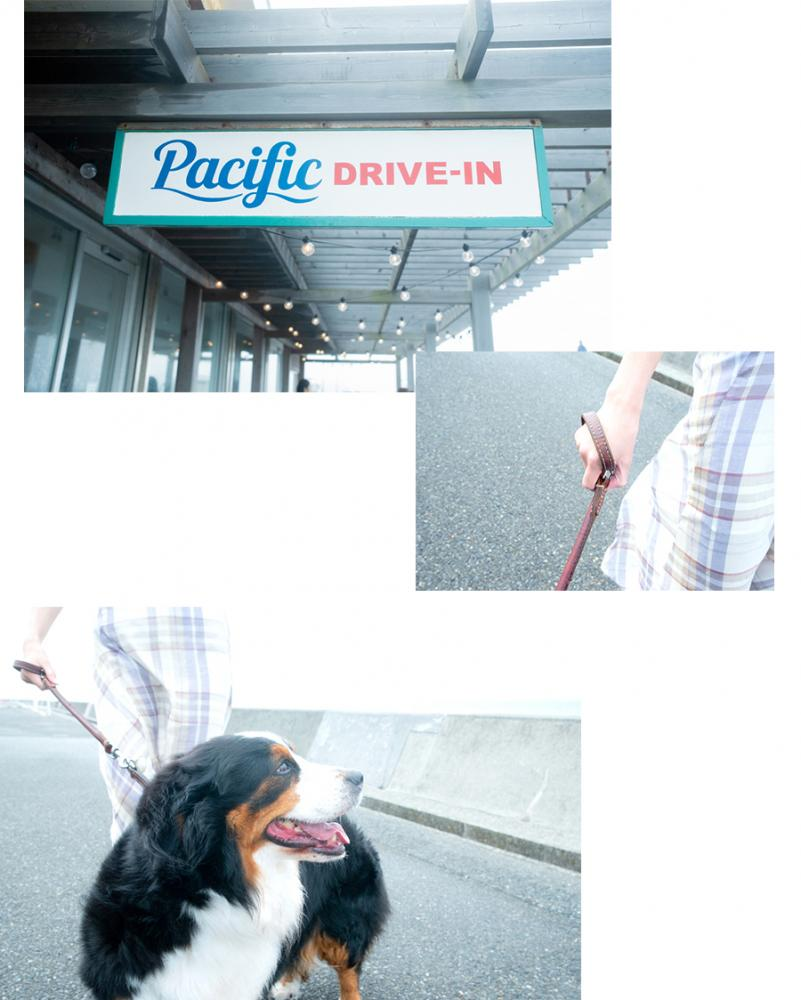 PacificDRIVE-IN 外観