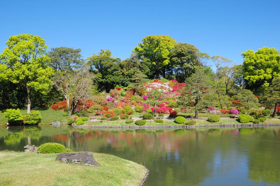 画像提供:公益財団法人東京都公園協会